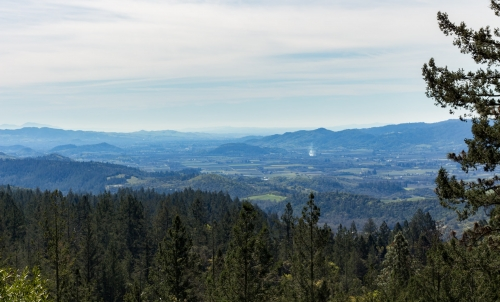 Napa Valley from Howell Mountain